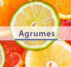 home-citricos-fr