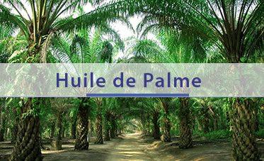 home-palma-fr